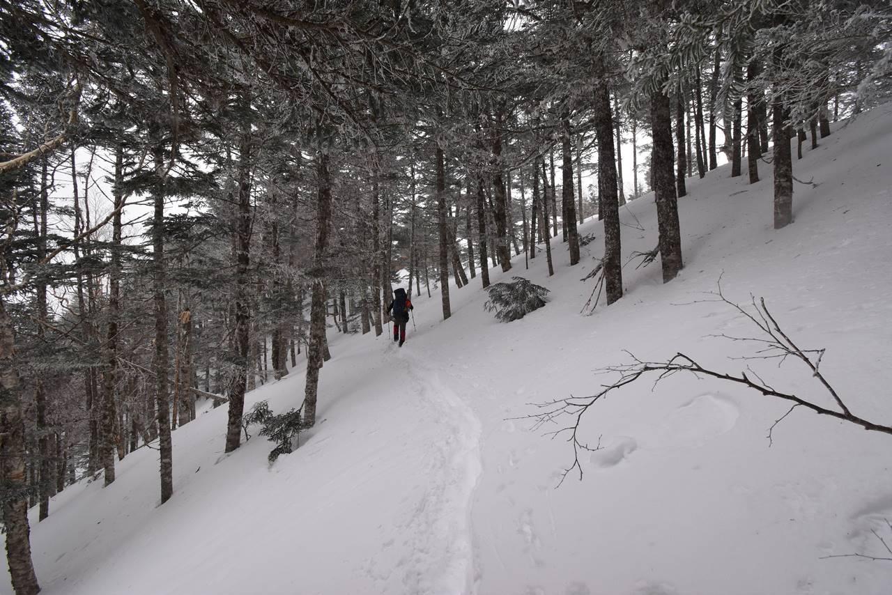 南アルプス・三伏峠 雪山登山