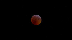 Total Lunar Eclipse (Super Blood Wolf Moon) - January 2019