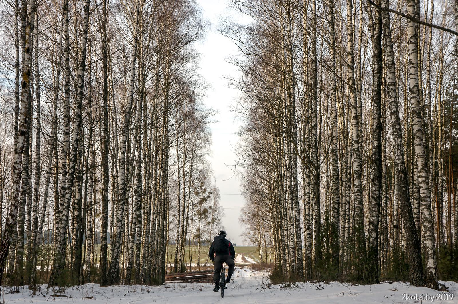 "47019035022 11f8c8b2a2 h - Лютая велопокатушка ""Ганцевичи - Барановичи"" 2019 | Отчёт"