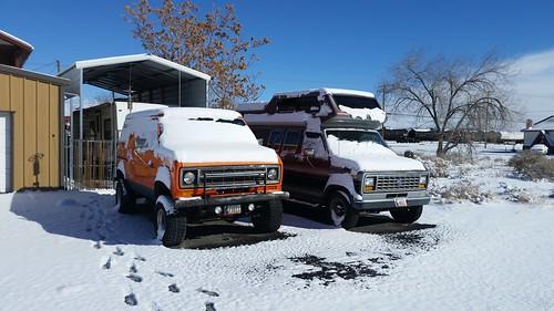Snow Kind of Vans