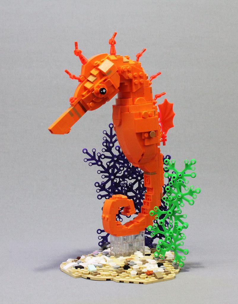 Tropical Seahorse