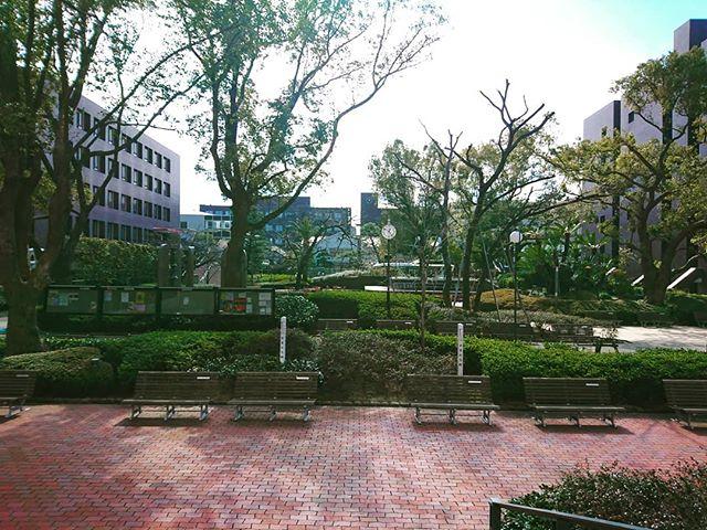 昨日はアメリカ服飾社会史研究会に出席するため武庫川女子大学まで。とにかく広い。