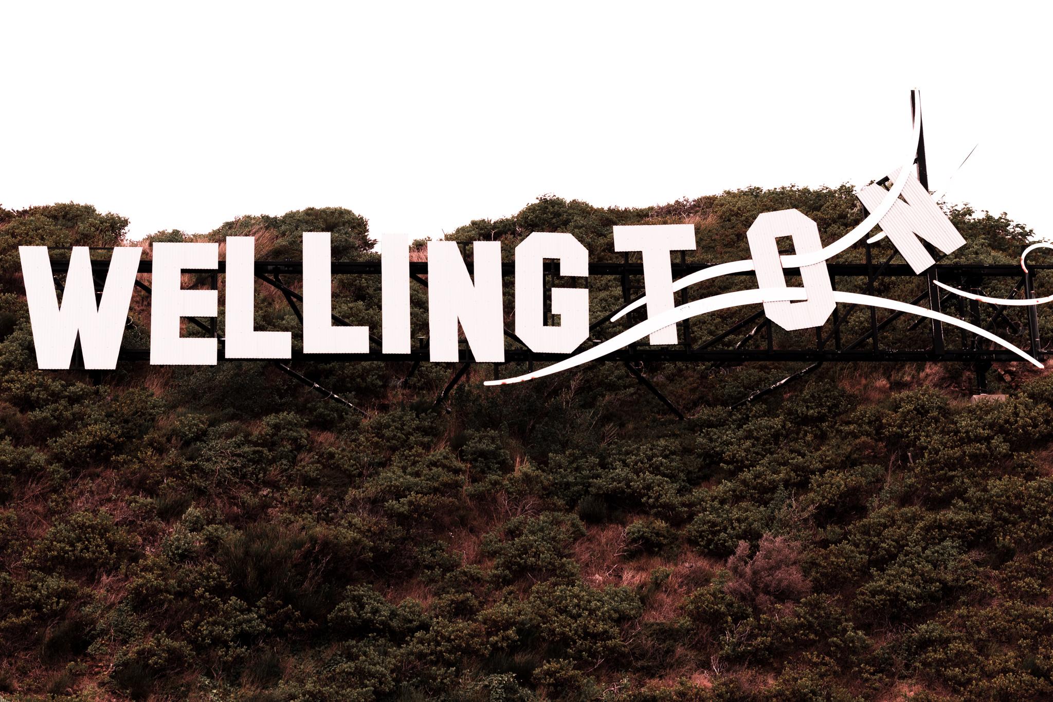 Wellington-47