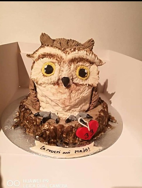 Owl Chocolate Cake from Mara Kruger of Cakes by Mara