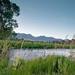 Sage_Trout School_Venues_Spring Creeks