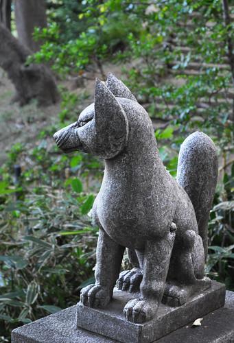 The guardian fox