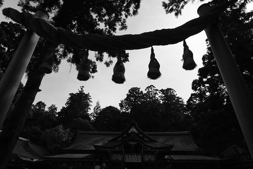 24-02-2019 Omiwa-Jinjya Shrine (3)