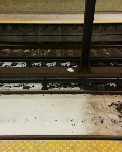 Cross-section at the tracks, Rosedale #toronto #ttc #rosedale #rail #tracks #night #latergram