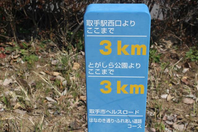 zuihoukouji-gosyuin013