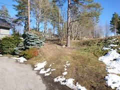 Skoglia-Bueveien