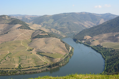 Douro river and its vineyards,  UNESCO World Heritage Site