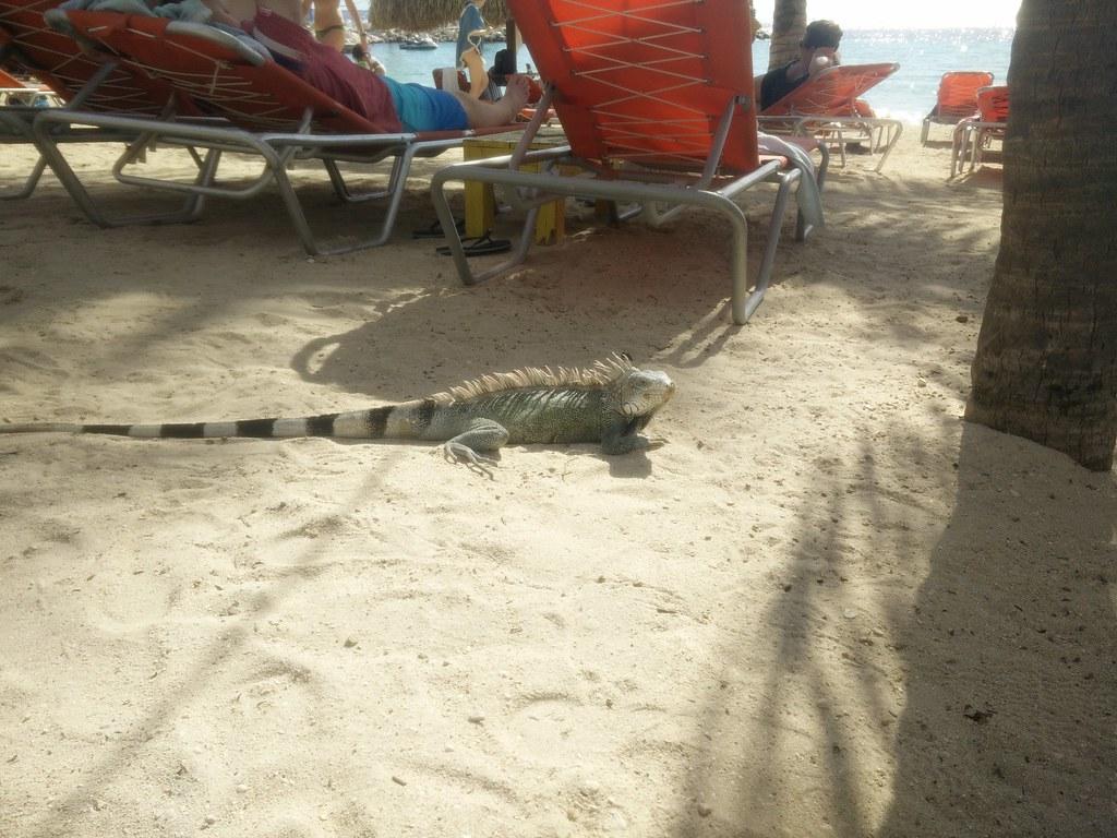 2017 Curaçao, Antilles néerlandaises