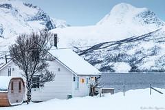 Maison à Skulsfjord