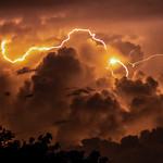 26. Veebruar 2019 - 12:00 - Nightstorm, Arnhem Highway, Wetlands, Northern Territory, Australia