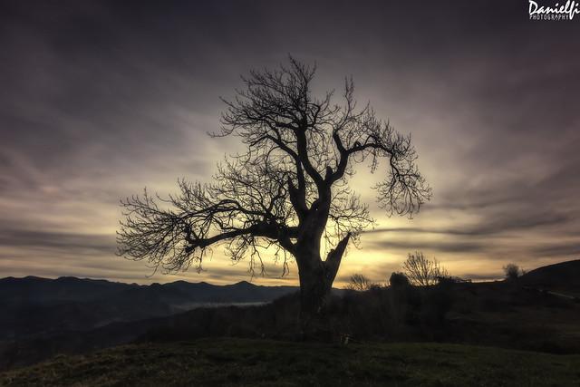 Calma - Calm, Canon EOS 80D, Sigma 10-20mm f/3.5 EX DC HSM