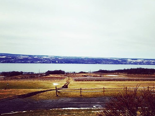 Seneca Lake, from the eastern shore #senecalake #fingerlakes