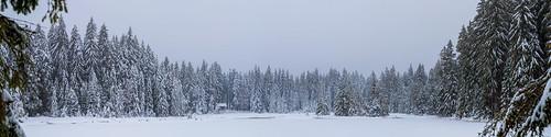 Lake Fichtelsee in Winter - Upper Franconia