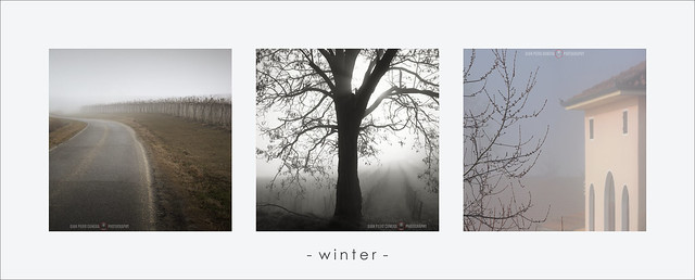 Winter triptych