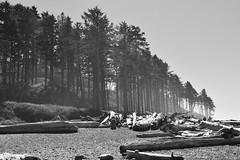 Ruby Beach 1