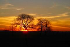 Soleil en Février - Photo of La Croix-en-Brie