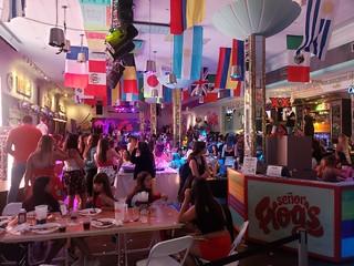 Miami Night Party - Senor Frogs  Galerie 47189301211 2061f8f84b n