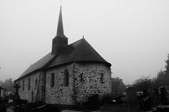 Quelque part dans la bruine de janvier, Bretagne - Photo of Mondevert