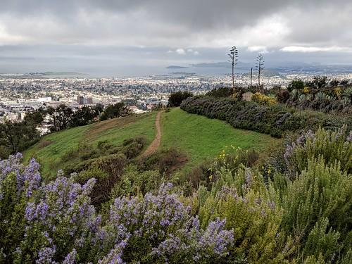 The way to Berkeley