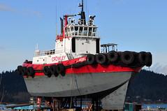 Tugboats - 2019
