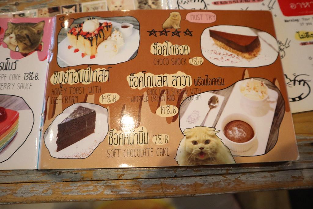 Caturday cat cafe (11)