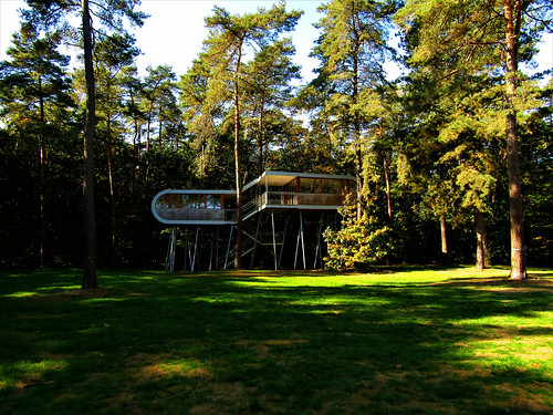 The Treehouse in Pijnven Forest