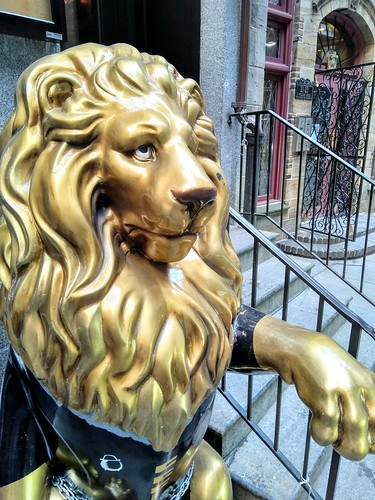 South William Lion