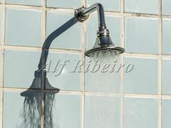 Alf Ribeiro 0270-109