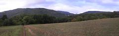 20080912 35532 1013 Jakobus Feld Wald Hügel_P01