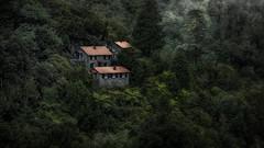 Pico do Arieiro V