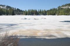 Ice keeps melting