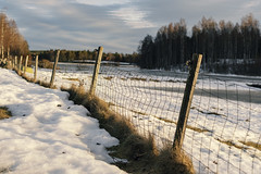 """Image by please follow me on insta """"windsofgreen"""" (smulgubbe) and image name Fence photo"""