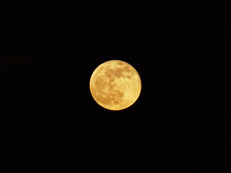 Lune le soir de l'éclipse 46881970391_8c9609ae53_c