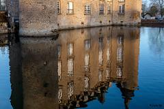 _DSF2175  - Château de Flers. - Photo of Montilly-sur-Noireau