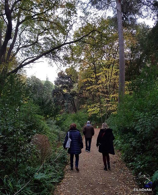 Pasar la tarde en el laberinto de Horta  (22)
