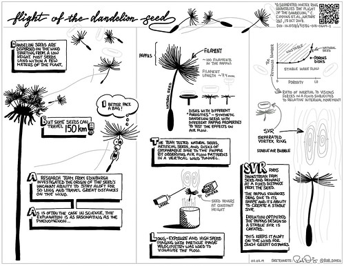 Flight of the Dandelion Seed