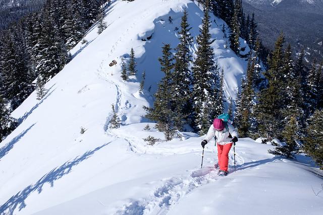 Snowshoeing - Gypsum Ridge - Feb 2019-17