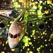 Lights on the plane by Teruhide Tomori
