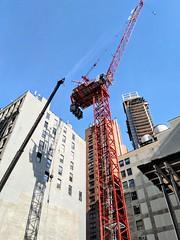 Ritz-Carlton Crane