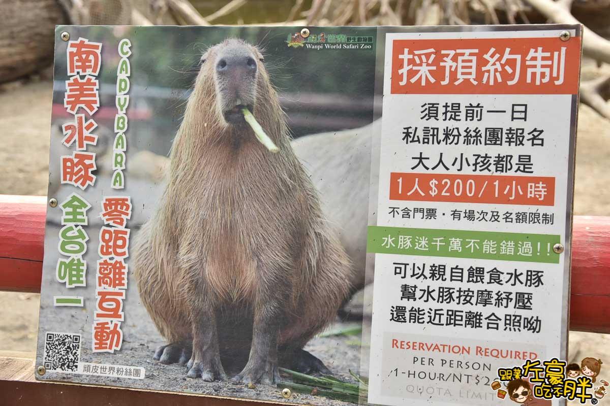 台南頑皮世界-120