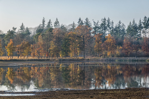 Recalling a beautiful autumn
