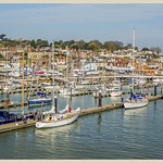 Harbour 115