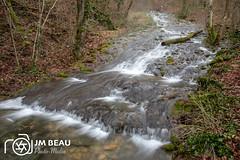 338A9534.jpg - Photo of Jours-en-Vaux