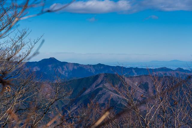 笹尾根越しに高々と大岳山@権現山