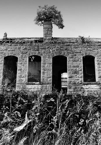 Abandoned Railway Station, Belturbet, Co Cavan, Ireland (1996)