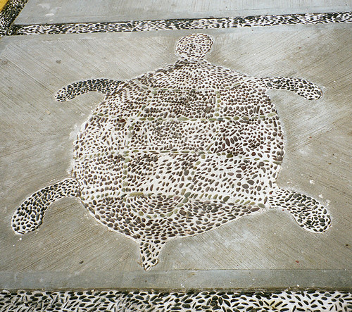 A turtle marked out with decorative stones on the sidewalk in Malaque, Mexico